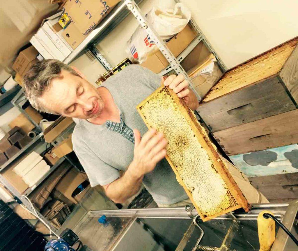 Les Ruchers du Dourdannais - Cyril Way - Miel bio, produits dérivés de la ruche (propolis, pollen, nougats, cire)